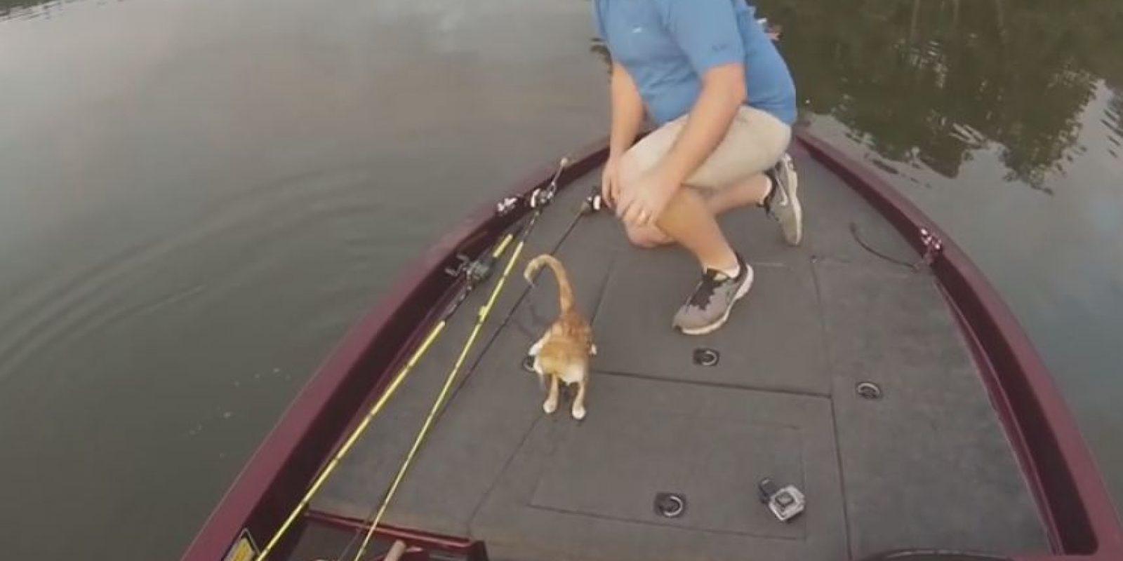Pero en esta ocasión se encontraron con dos gatos. Foto:Vía Youtube Alabama Adventures