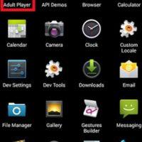 """""""Adult Player"""" extorsiona a quienes ven contenido para adultos. Foto:vía zscaler.com"""