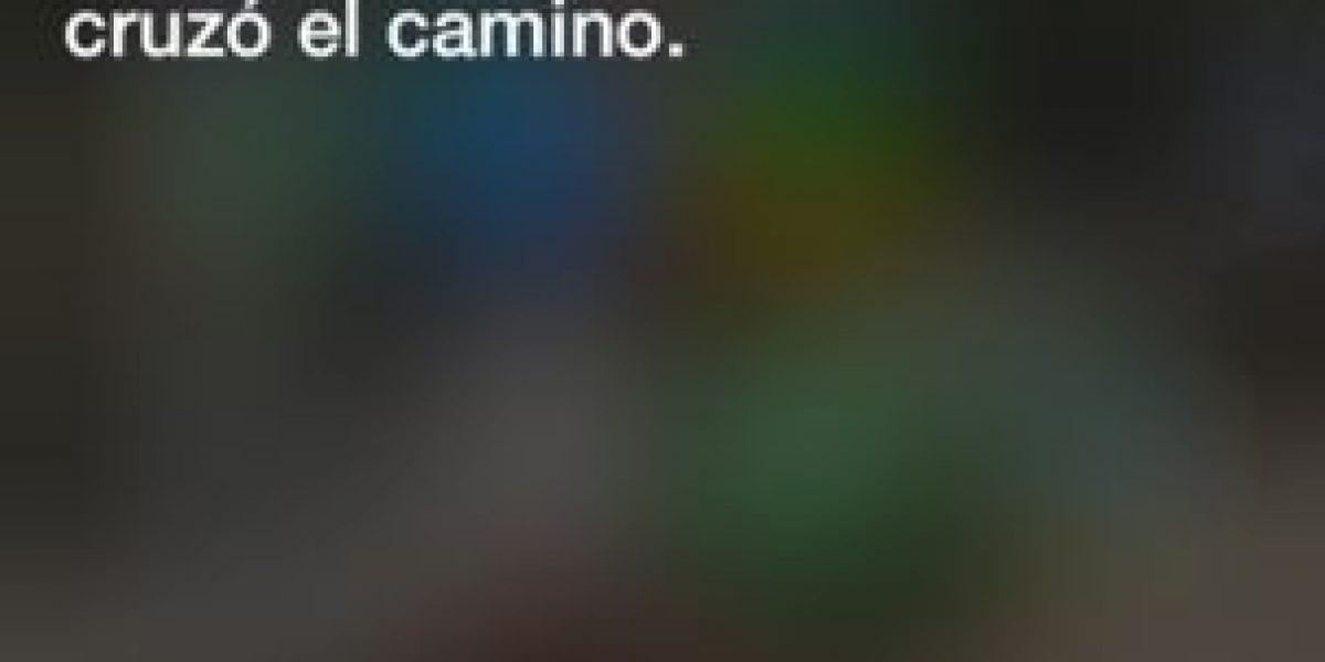 Fotos: Las ingeniosas respuestas de Siri sobre el evento de Apple