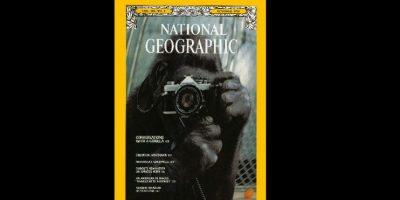 Octubre 1978. La protagonista es la gorila Koko, a quien puede verse fotografiando su imagen reflejada en un espejo. Foto:Vía nationalgeographic.com