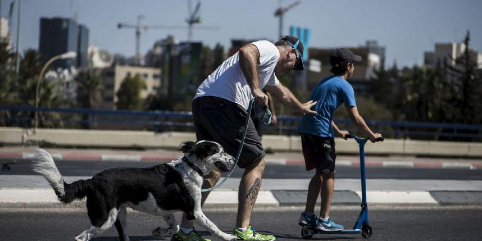 5. No correr o gritar si uno los ataca. Foto:Getty Images