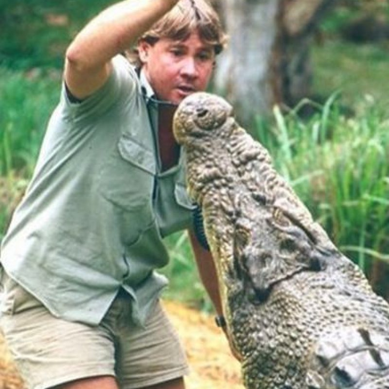 "Bindi Sue Irwin es una actriz australiana, hija del famoso ""Cazador de Cocodrilos"" Steve Irwin. Foto:Instagram/bindisueirwin"