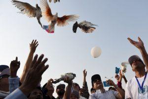 Las palomas también formaron parte de la celebración de los pakistaníes. Foto:AFP