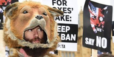 La organización Personas por la Ética en el Trato de los Animales, es quien presentó la demanda en contra del fotógrafo David J. Slater. Foto:Getty Images