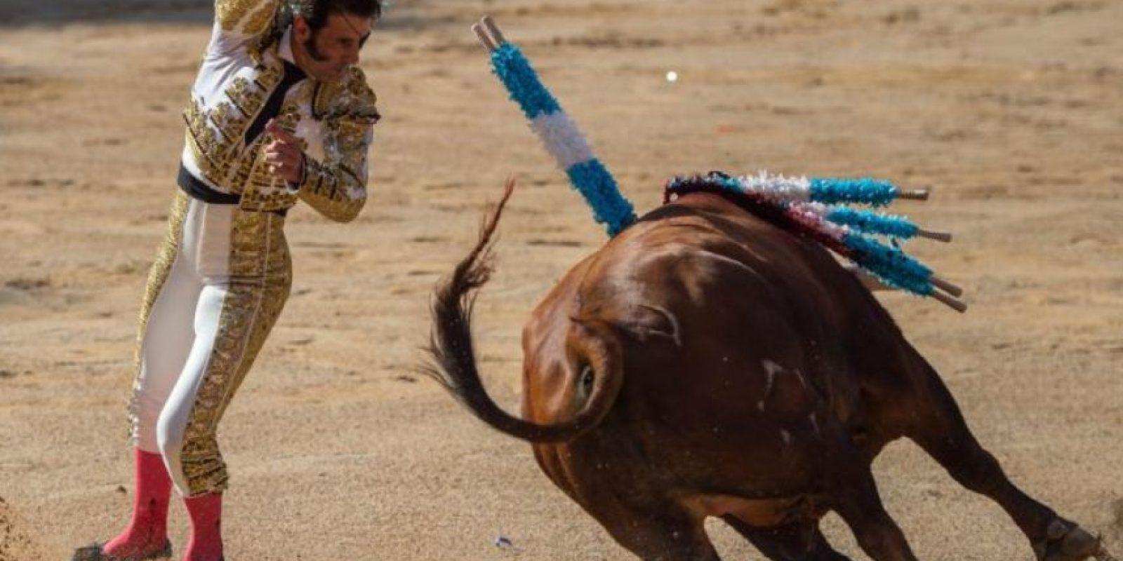 En 2000 se prohibieron las corridas en Cataluña. También se prohíben en Asturias, Andalucía y Canarias. Foto:vía Getty Images