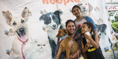 ¡ADOGTAME! Vuelve la iniciativa para adoptar mascotas