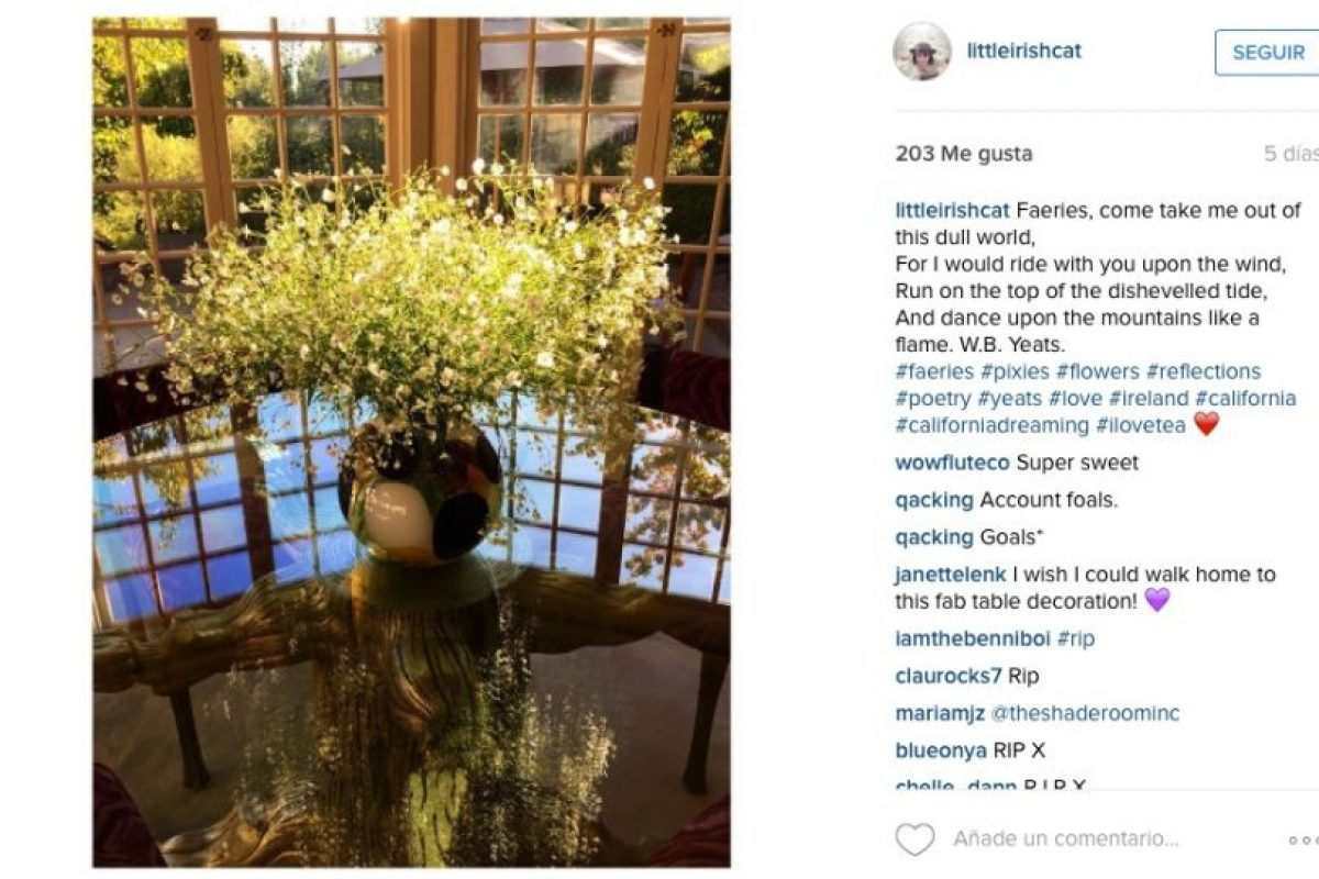 Y dedicó un poema de William Butler Yeats en Instagram Foto:vía instagram.com/littleirishcat