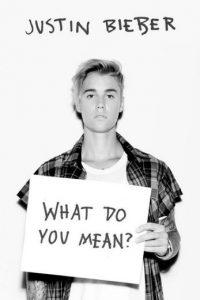 Justin eligió Snapchat para burlarse de los británicos. Foto:Instagram/JustinBieber