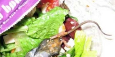 Una rata en la ensalada… Foto:Imgur