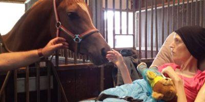 Su ilusión era estar cerca de un caballo. Foto:Vía Facebook.com/wensenrijders