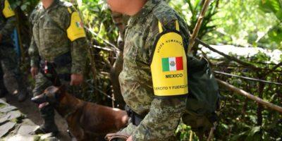Por esta razón los Topos de México no pudieron apoyar en El Cambray II