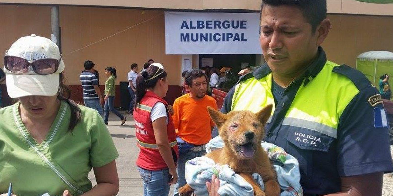 Foto:Amilcar Ávila