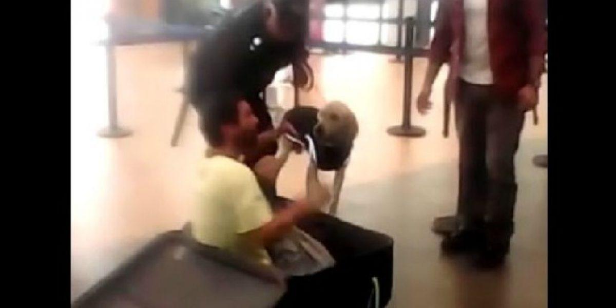 Trataba de huir dentro de maleta y fue descubierto por un perro