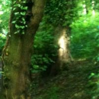 Aquí con un zoom Foto:Birminghamhistory