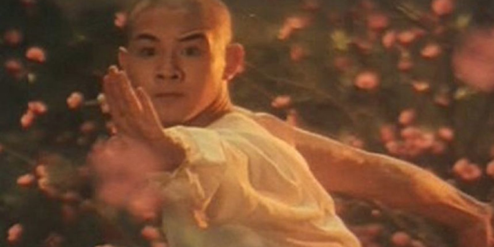 Comenzó su carrera en 1982, luego de ser campeón en artes marciales wushu.