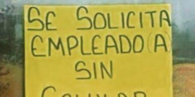 Porque una paloma mensajera les dirá si consiguieron el trabajo. Foto:vía SoloenMexico/Instagram