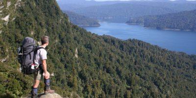 Está situado en el Parque Nacional de Te Urewera en la Isla Norte de Nueva Zelanda Foto:Vía flickr.com