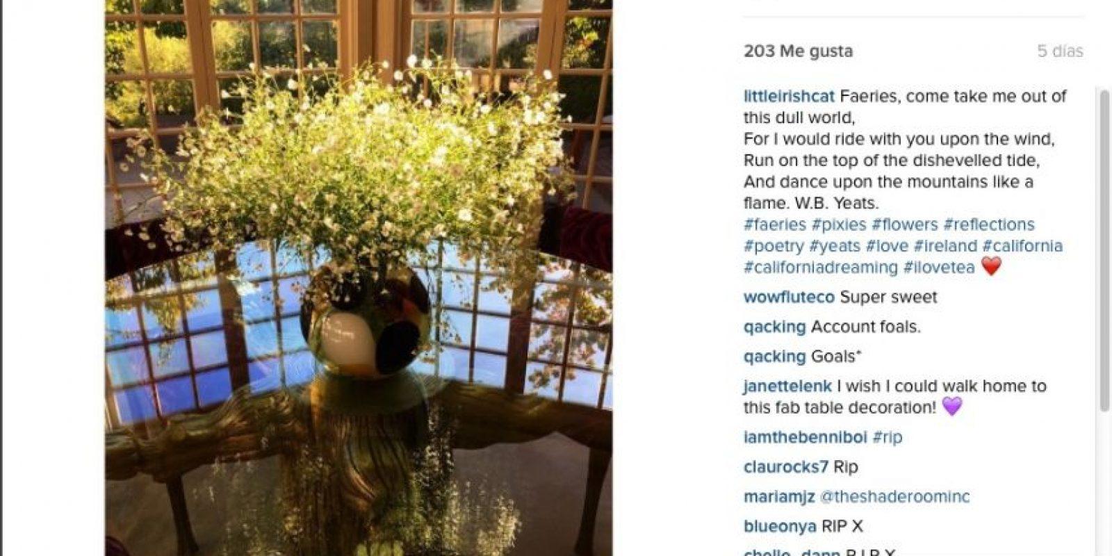 Y dedicó un poema de William Butler Yeats en Instagram Foto:vía instagram/littleirishcat