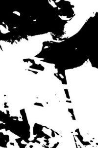 Y aquí en blanco y negro. ¿Pueden distinguirla? Foto:Vía Pnas.org