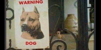 Ellos utilizan este cartel para ahuyentar a los ladrones. Foto:Tumblr