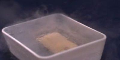 5- Se salvó ante el nitrógeno liquido. Foto:FullMag / YouTube