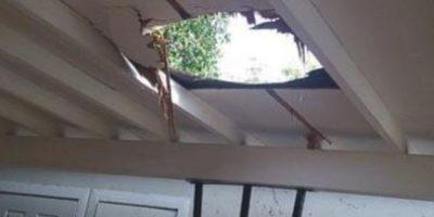 """3. Un paquete de marihuana """"cayó del cielo"""" a una familia en Estados Unidos Foto:Departamento de Policía de Nogales"""