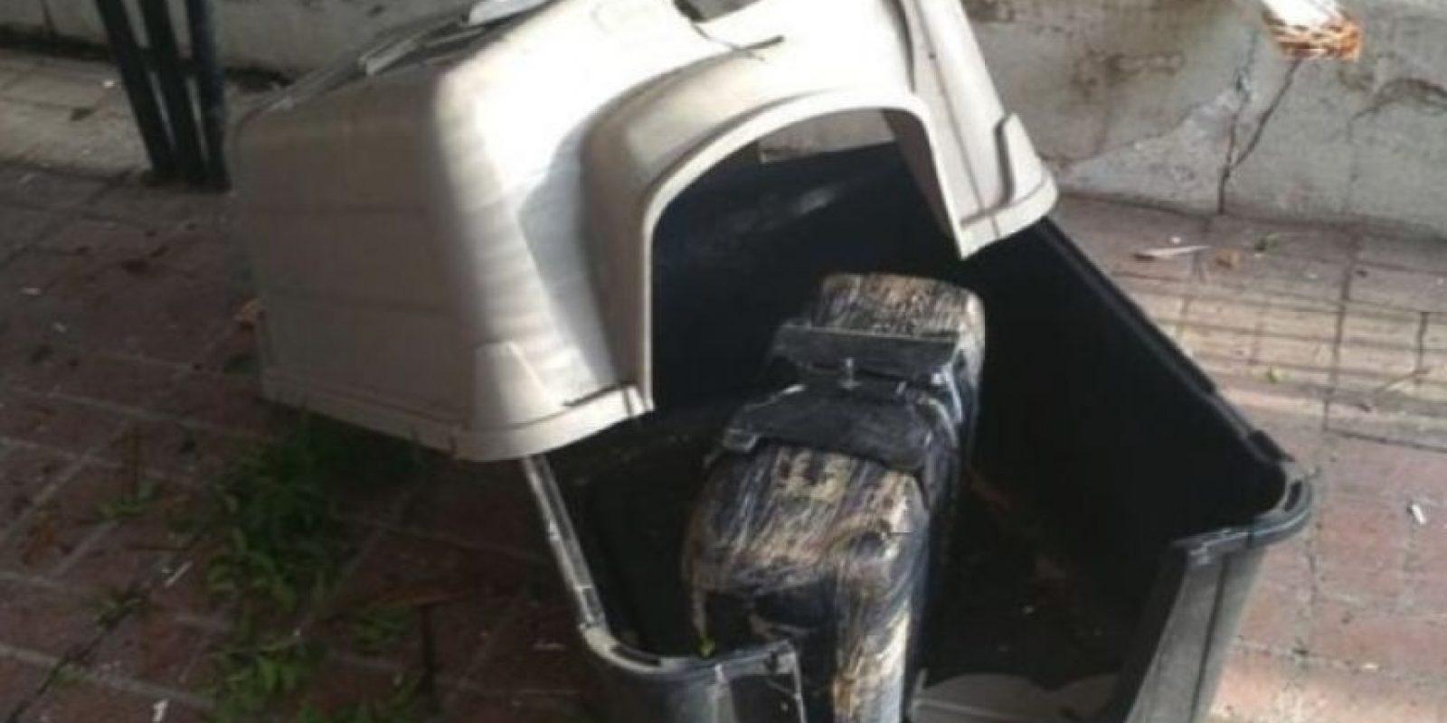 """De acuerdo al Departamento de Policía de Nogales, la marihuana fue arrojada por una nave ultraliviana, que es una manera de transportar droga en la frontera entre Estados Unidos y Méxco. """"Normalmente no aterrizan en casas"""", dijo a la cadena """"CNN"""" el detective Robert Ferros. Foto:Departamento de Policía de Nogales"""