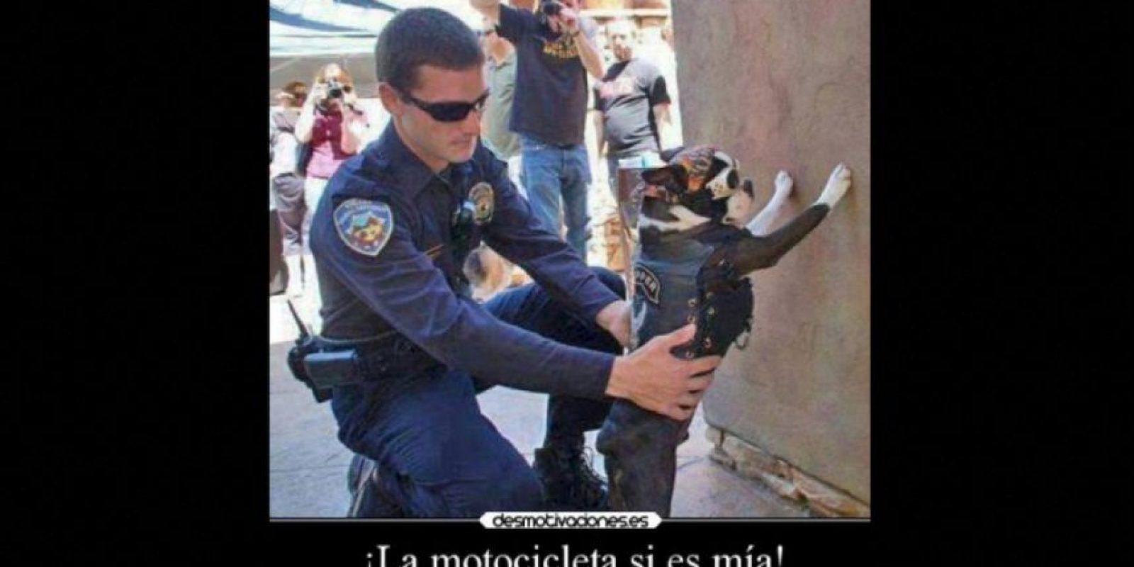 Foto:Vía Desmotivacion.es