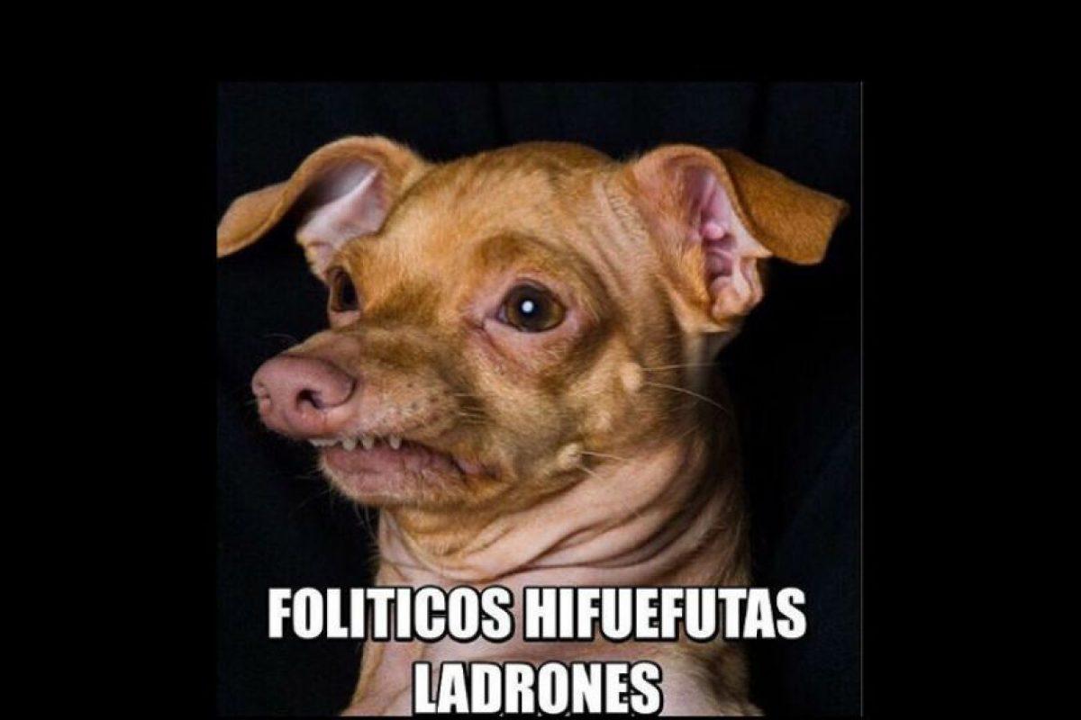Muchos dan su opinión sobre los políticos Foto:Vía Instagram
