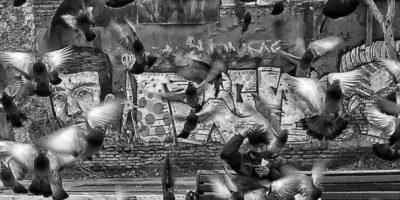 País: Chile / Categoría: Secretos de la Ciudad Foto:Natalia Cea Saldias