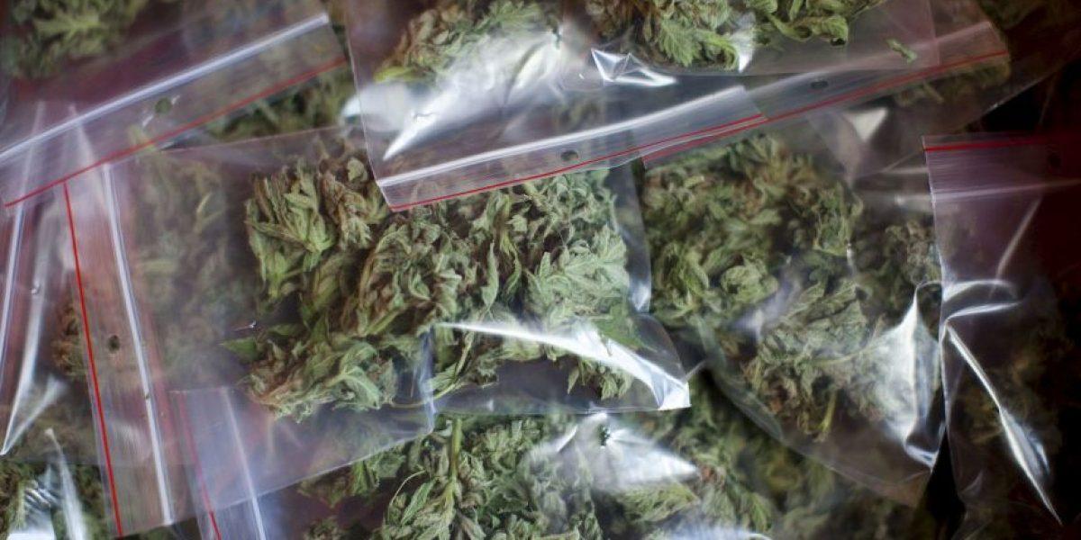 8 usos medicinales de la marihuana