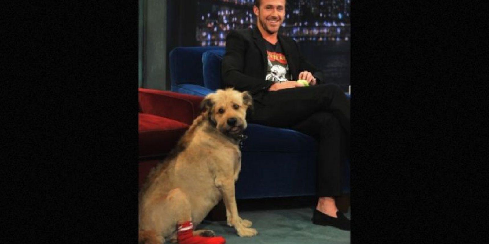 Ryan Gosling Foto:Getty Images