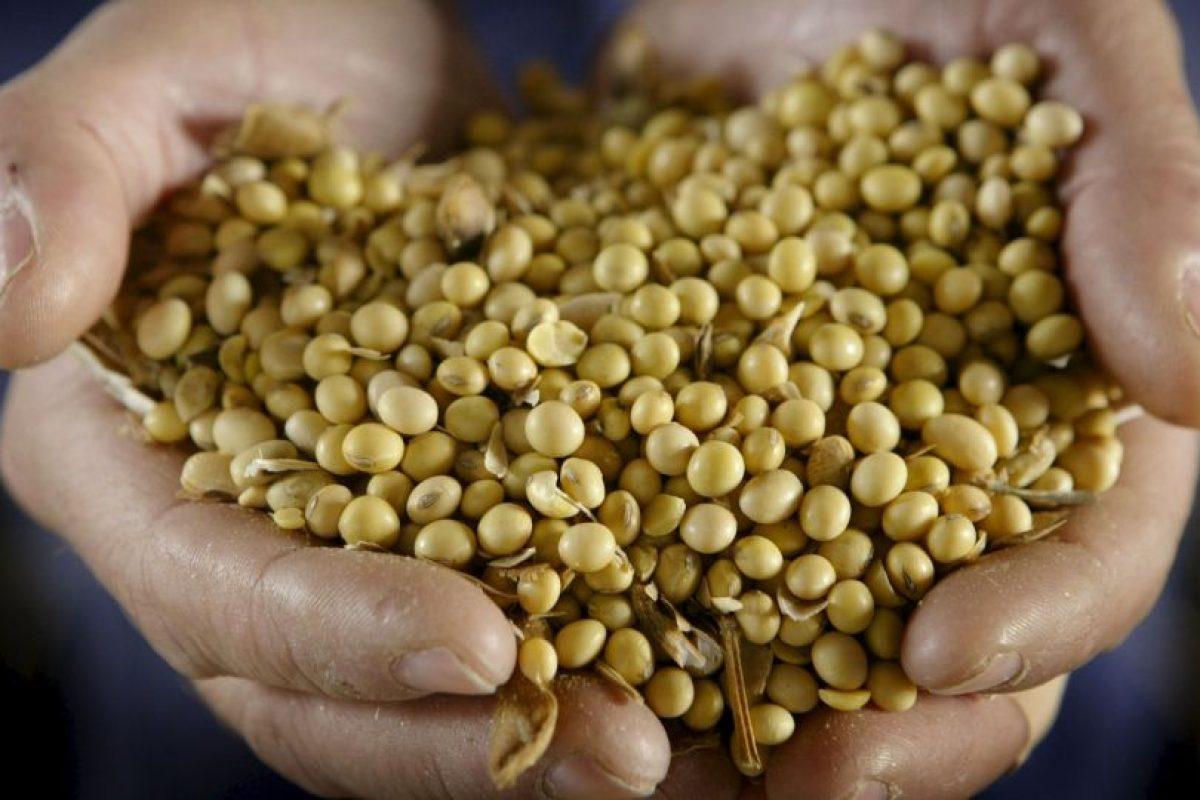 Este tipo de alimentos es buena fuente de proteínas. Contiene una serie de fitoquímicos, que permiten que las células cancerosas se diseminen Foto:Getty Images