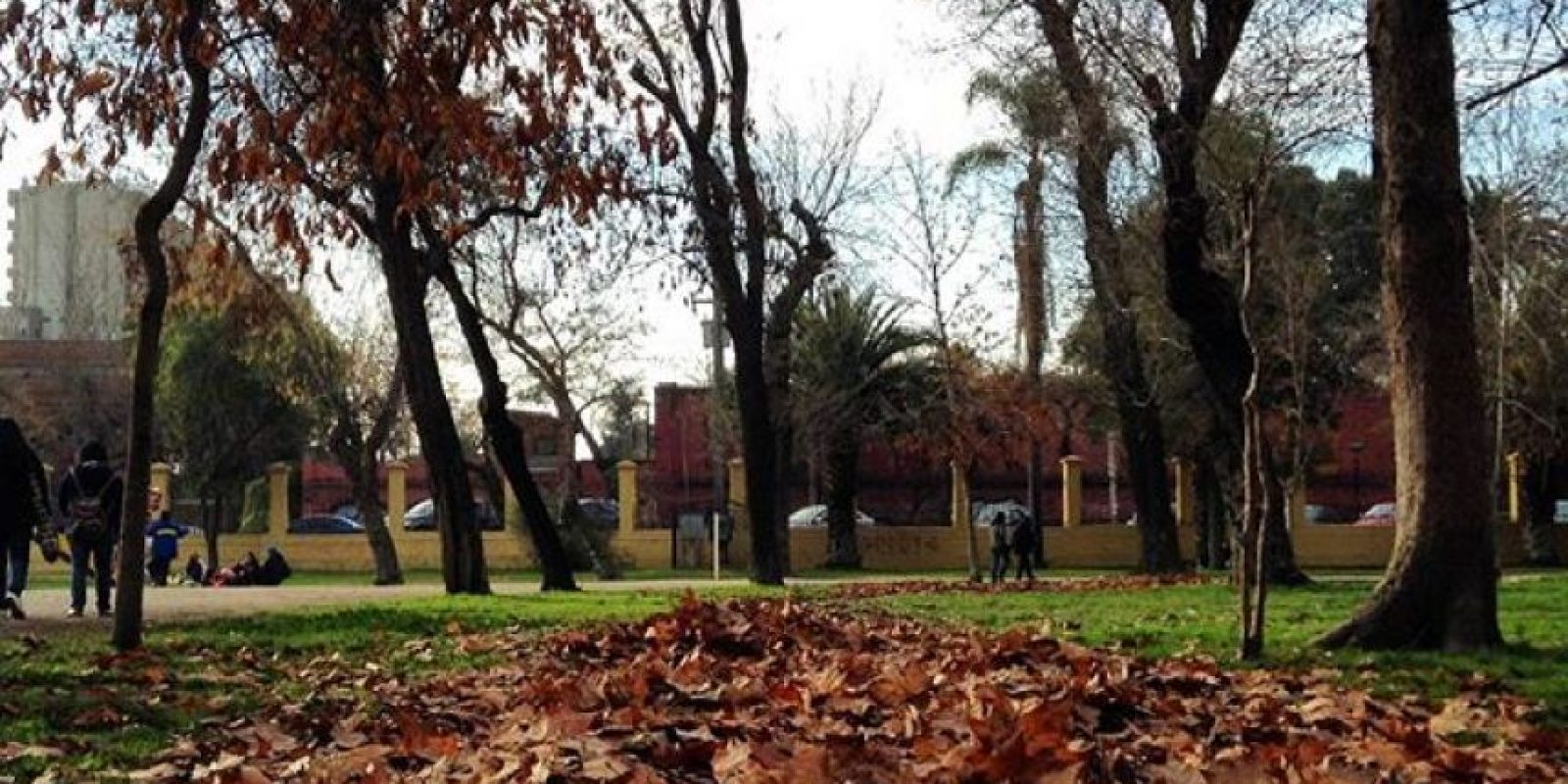 4. Parque Quinta Normal Foto: Instagram.com/tag/search/ParqueQuintaNormal