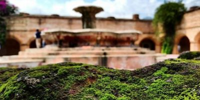Cada visita es descubrir algo inimaginable. Foto:twitter.com/kem.artesanias