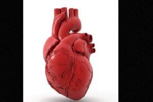 Un paciente fue ingresado en el hospital de la ciudad italiana de Verona con un grave problema cardíaco. Foto:vía Youtube