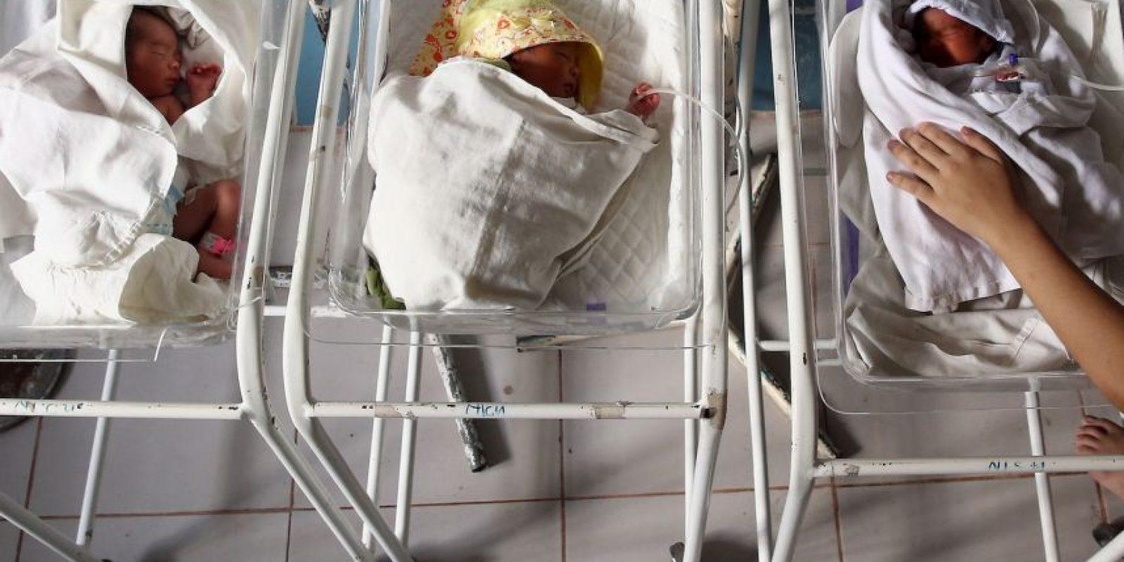 Cerebro Foto:Getty Images