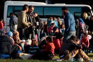 Cerca de siete mil migrantes llegan cada día a Alemania Foto:Getty Images