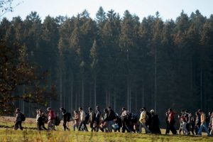 Esperan a 800 mil migrantes para 2015 Foto:Getty Images