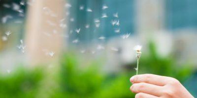 5. Sean conscientes de cualquier signo de compasión hacia quien los ofendió, observen si se tienen emociones más suaves hacia dicha persona. Foto:Pinterest
