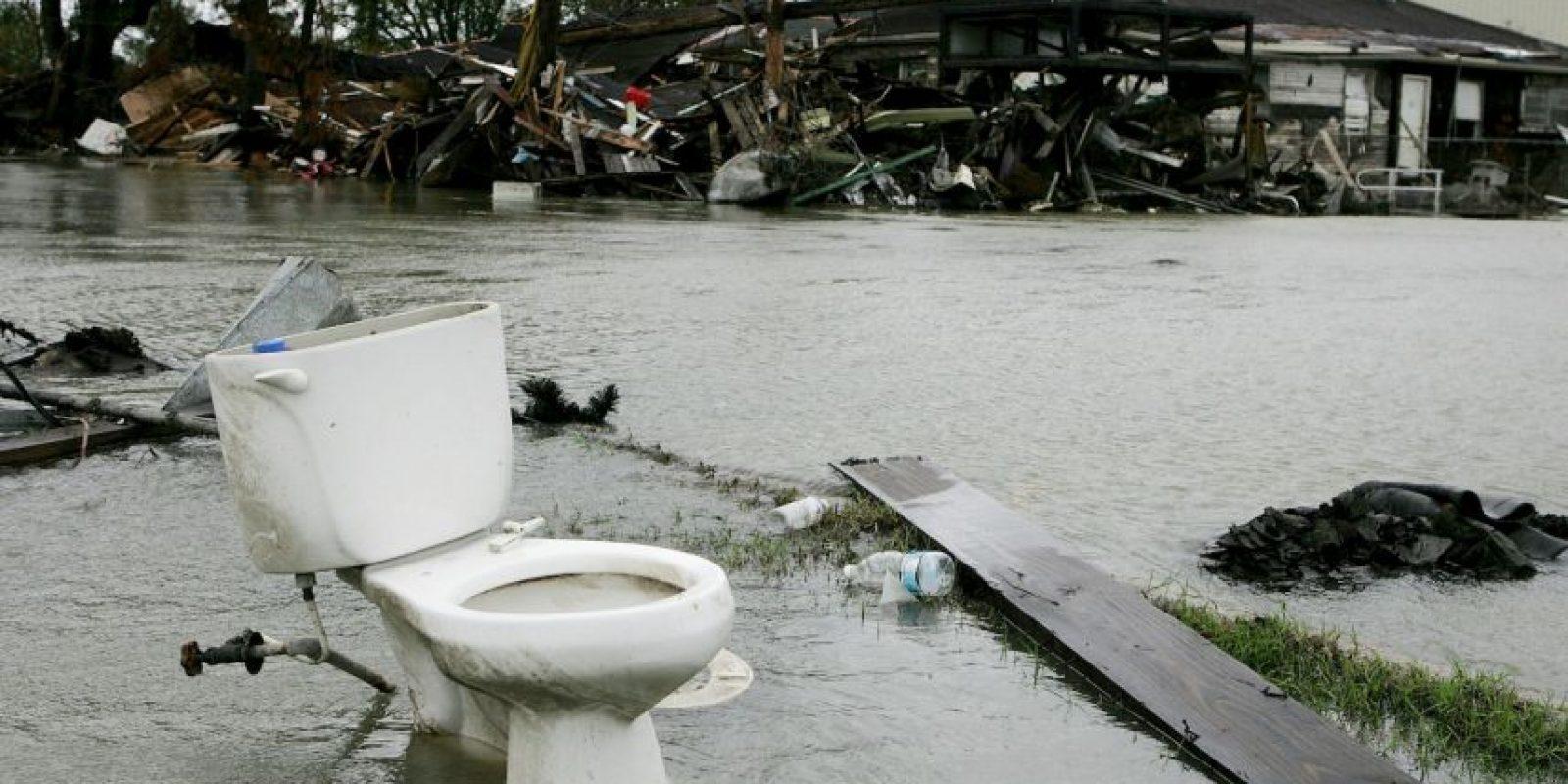 Con el que se podrían traer beneficios para la salud y medio ambiente en todo el mundo. Foto:Getty Images