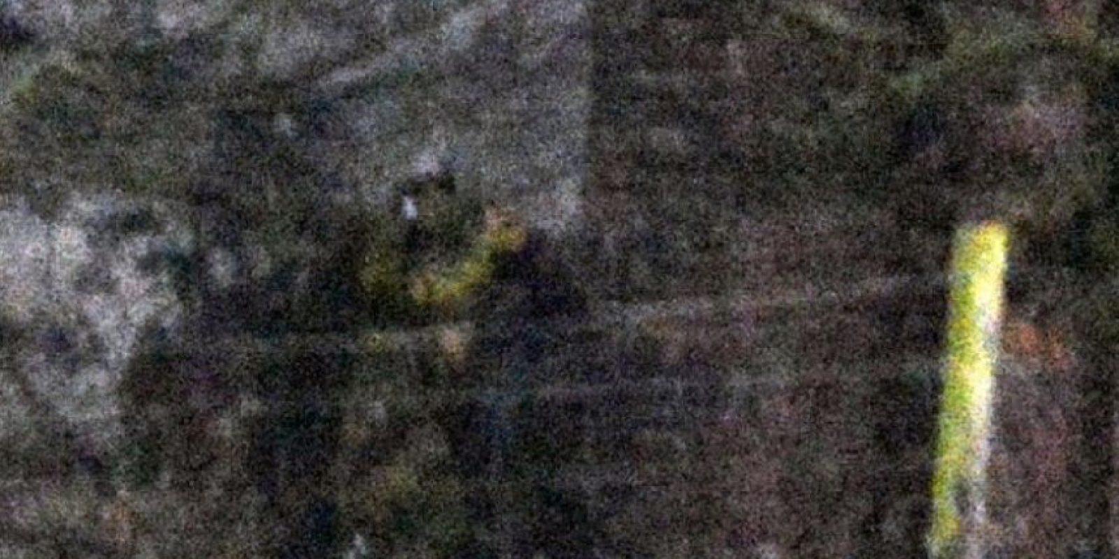 Aquí un zoom Foto:Vía Jimie Brassington/Expressandstar