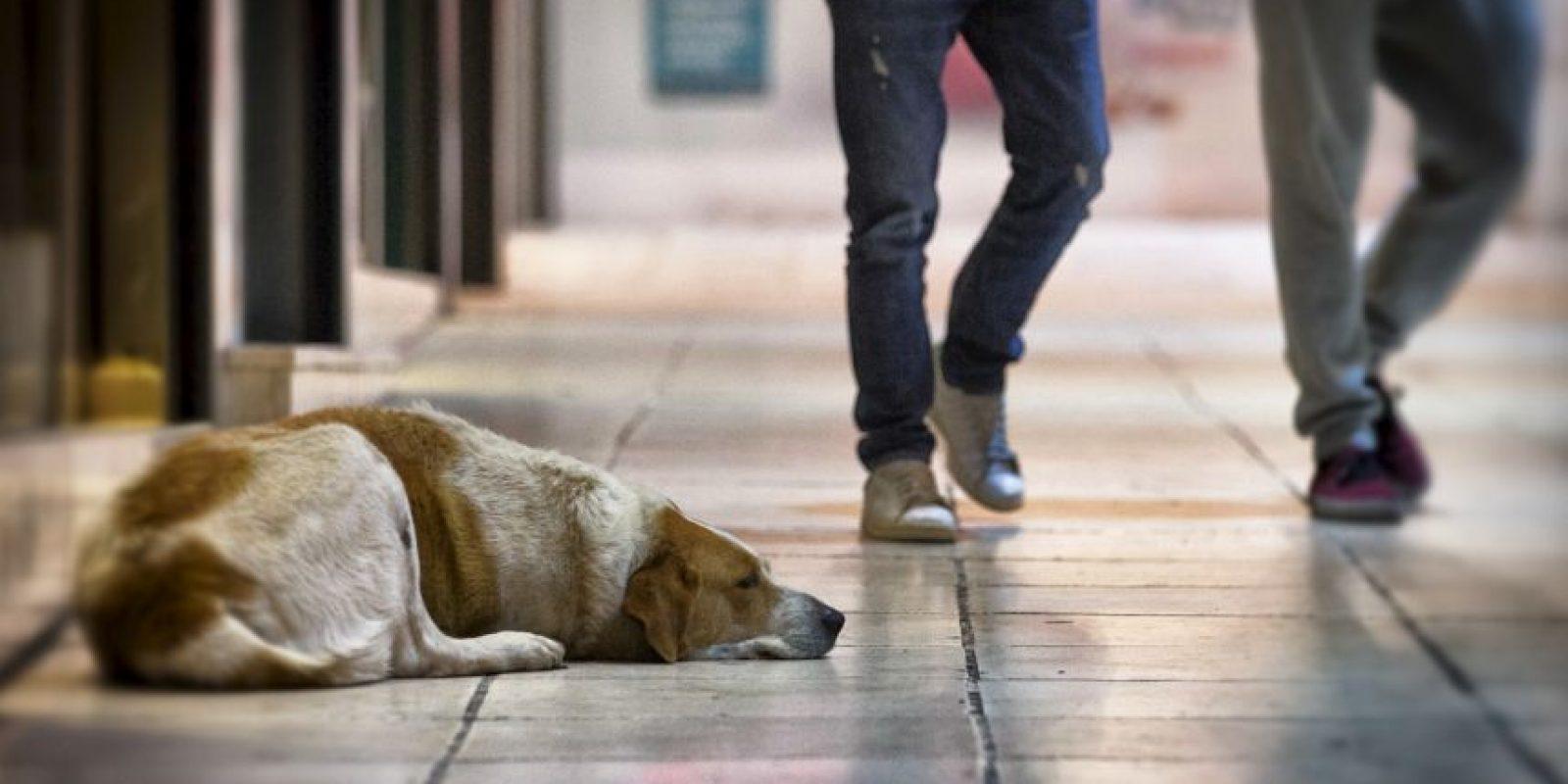 4. Puede ocasionar problemas de salud. Foto:Getty Images