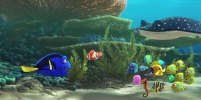 """Después de ir a una clase con """"Nemo"""", """"Dory"""" se siente nostálgica por su casa y empieza una búsqueda sobre sus orígenes Foto:Disney"""