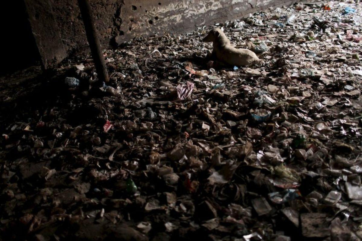 Forma que ha sido replicada por narcotraficantes de toda América Latina. Foto:Getty Images