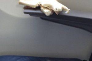 2. Los que actúan como si estuviesen en su cuarto cuando realmente van en el bus o avión. Foto:Tumblr