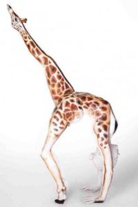 Una bailarina Foto:Tumblr