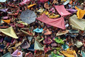 Mujeres colectan arroz durante festival en la India. Foto:AFP