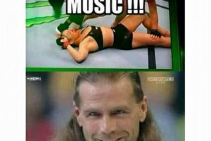 Dulce música en la barbilla… funciona siempre. Foto:Vía facebook.com/MemesMMA