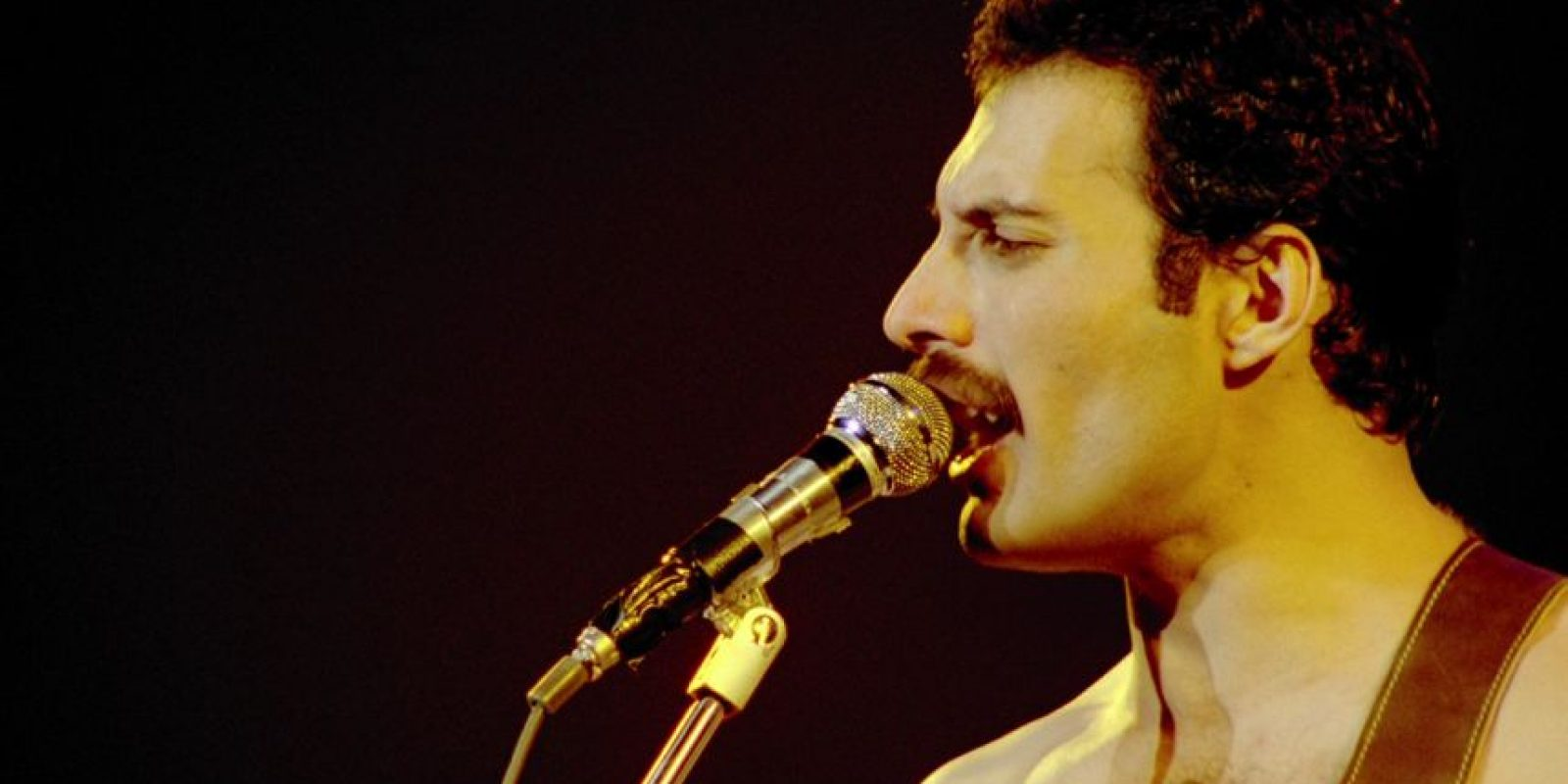 Freddy Mercury Foto: Agencias